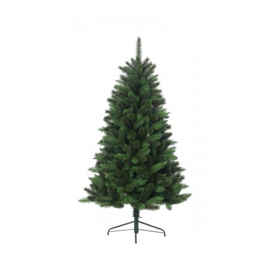Jela California Pine 185 cm bor